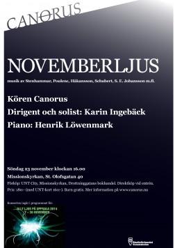 Novemberljus_konsert nov 2014